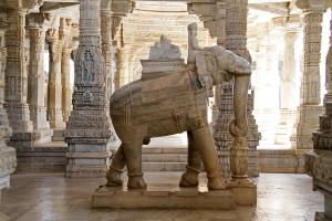 11_11_India3 Ranakpur 0659