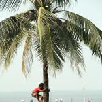 11_11_India11 Mumbai 1777
