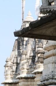 11_11_India3 Ranakpur 0643