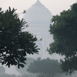 11_11_India5 Agra 0792 (1)