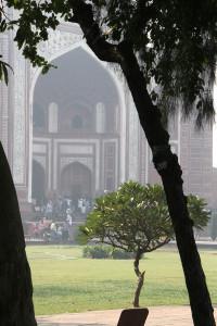 11_11_India5 Agra 0919