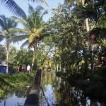 KERALA FAM TRIP 258