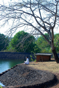 Meditation near the Lake